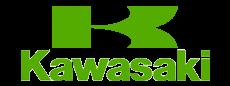 cat-kawasaki1