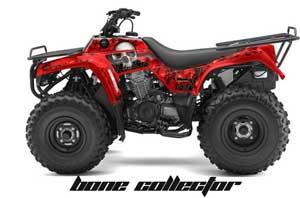 Kawasaki-Bayou250_Bones_R0303