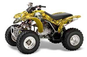 large_262_Honda_TRX_250_EX-2002_2004_GRAPHICS_KIT_BC_YBR02
