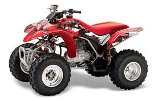 large_262_Honda_TRX_250_EX-2002_2004_GRAPHICS_KIT_CX_R03
