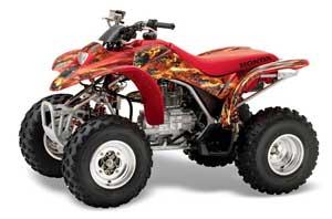 large_262_Honda_TRX_250_EX-2002_2004_GRAPHICS_KIT_FS_R05