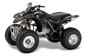 large_262_Honda_TRX_250_EX-2002_2004_GRAPHICS_KIT_Reaper_BLK08