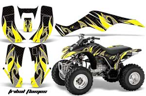 large_262_Honda_TRX_250_EX-2002_2004_GRAPHICS_KIT_TF_YB
