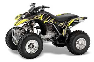 large_262_Honda_TRX_250_EX-2002_2004_GRAPHICS_KIT_TF_YB10
