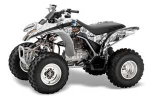 large_262_Honda_TRX_4e8547acd6487